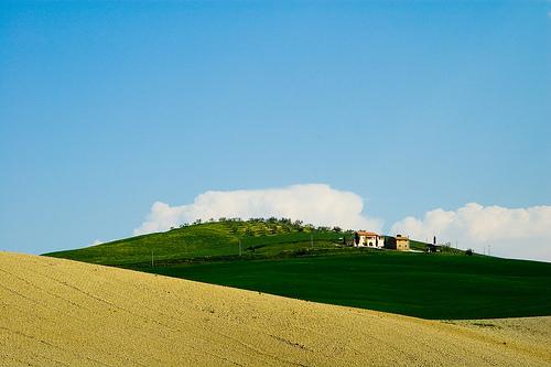 paesaggio-verde
